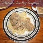 Mushroom-Free Beef Stroganoff by Dish Ditty