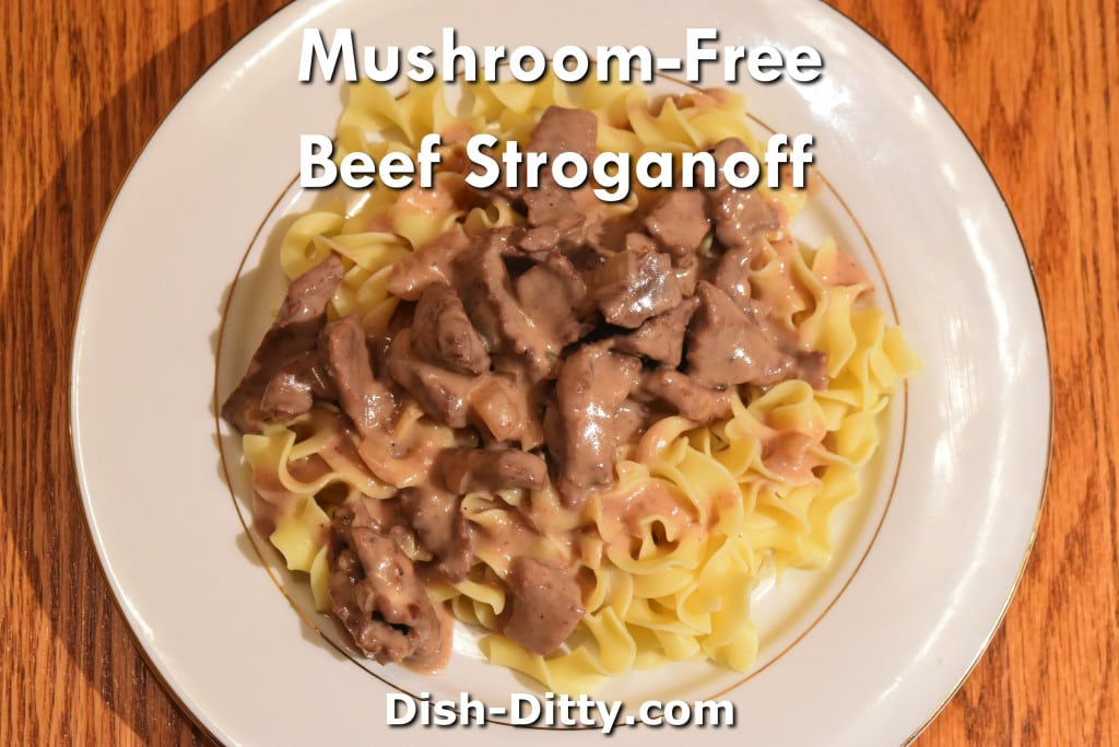 Mushroom-Free Beef Stroganoff by Dish Ditty Recipes