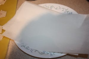 Plat with paper towel