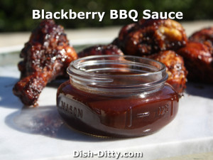 Blackberry BBQ Sauce by Dish Ditty