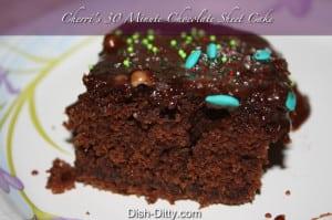 Cherri's 30 Minute Chocolate Sheet Cake by Dish Ditty