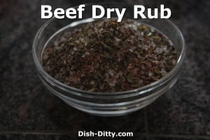Beef Dry Rub by Dish Ditty Recipes