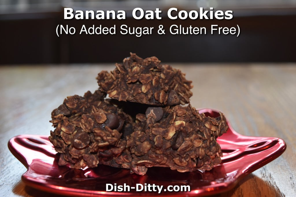 Chocolate Banana Oat Cookies by Dish Ditty Recipes