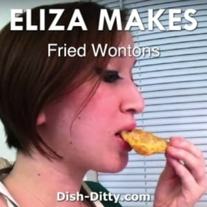 Fried Wontons by Eliza Makes!
