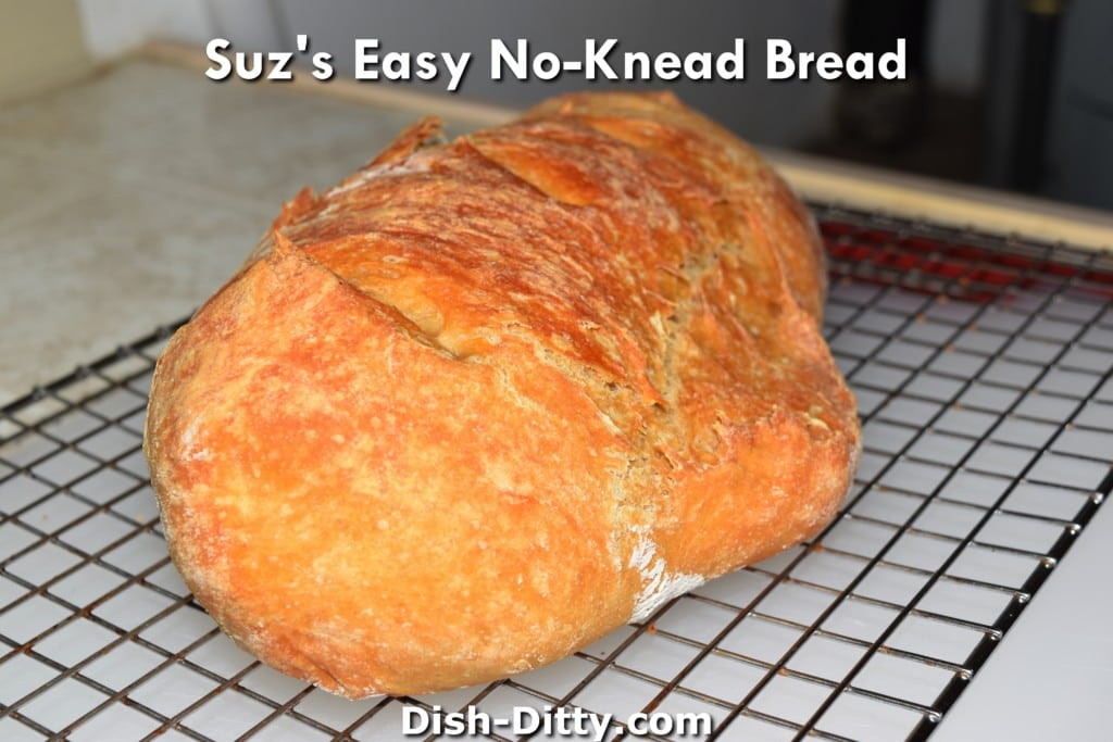 Suz's Easy No-Knead Bread Recipe by Dish Ditty Recipes
