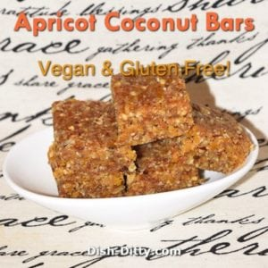 Apricot Coconut Bars (Gluten Free & Vegan)