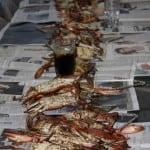Crab Heaven