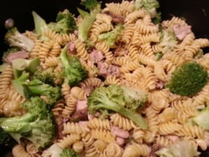 Broccoli Chicken Noodle