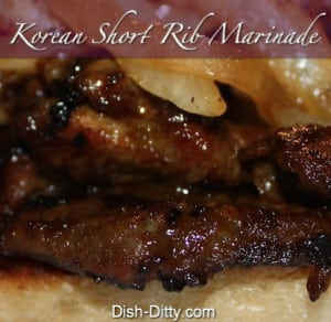 Korean BBQ Short Rib Marinade