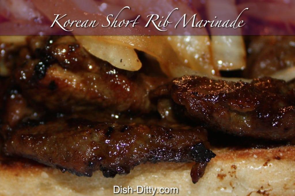 Korean Short Rib Marinade by Dish Ditty