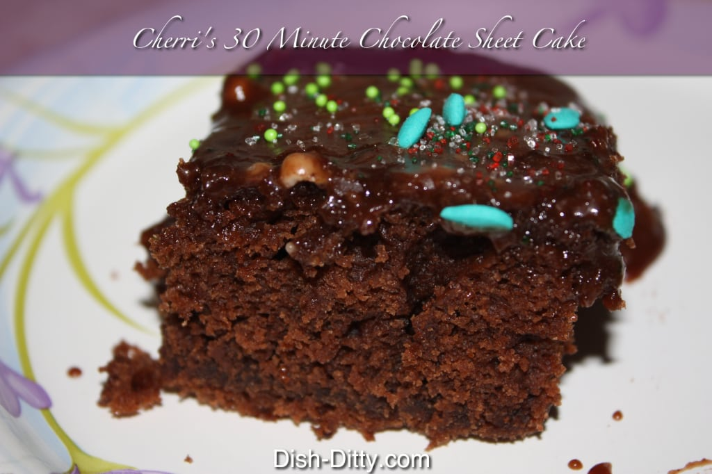 Cherri's 30 Minute Chocolate Sheet Cake by Dish Ditty