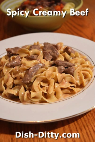Spicy Creamy Beef & Noodles by Dish Ditty Recipes