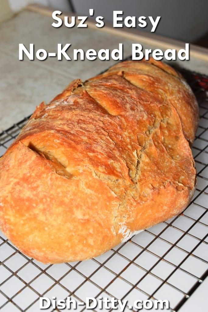 Suz's Easy No-Knead Bread Recipe by Dish Ditty Recipes