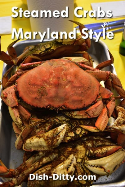 Maryland Style Steamed Crab by Dish Ditty Recipes