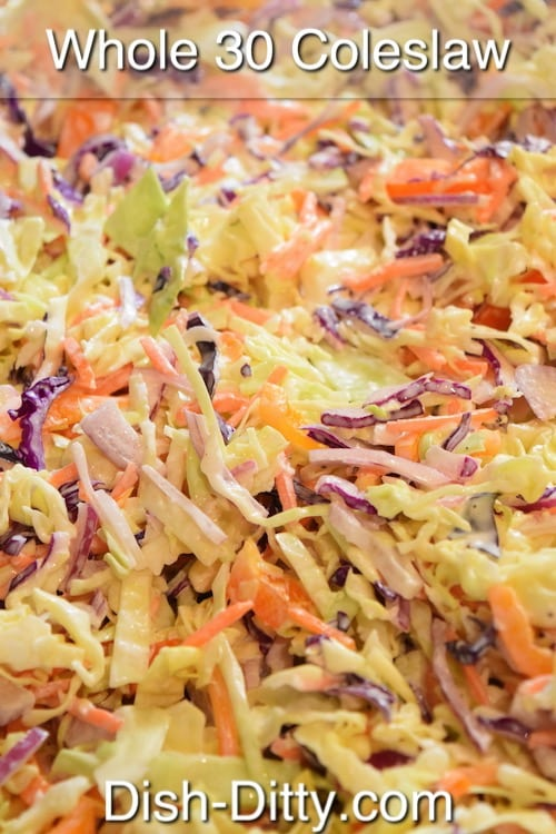 Whole 30 Coleslaw Recipe by Dish Ditty Recipes